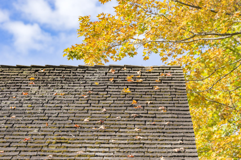 Fall Roof Inspection